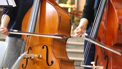 Close-up of musicians women playing classical music on cello Footage