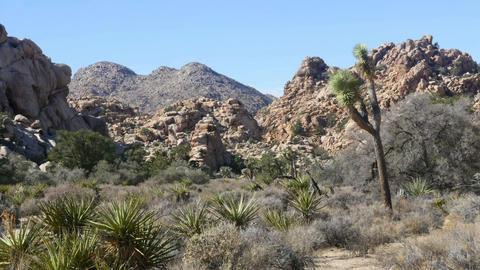 Hidden valley, Time lapse of rock piles in Hidden valley, Joshua tree national Live Action