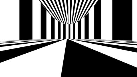 Abstract optical art. Black and white lines. Seamless loop Footage