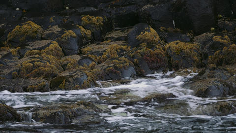 Carrick A Rede - Water Splashes Against Algae Covered Stones, Norther Ireland -  Footage