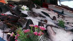 Turkey the Aegean Sea Bodrum 031 fresh fish on ice Footage