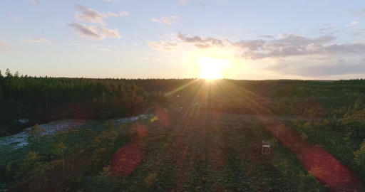 Swamp, Cinema 4k pan view of a wildlife watch tower, orange sunset sun and a Footage