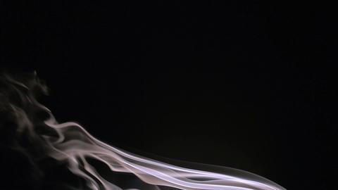 Smoke on a black background Live Action