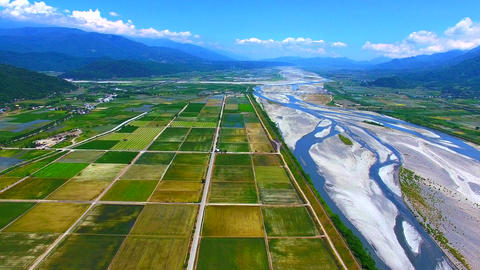 Aerial view of river and rice farm Live影片