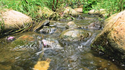 Small creek Footage