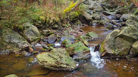 Tro Maret River, Ardennes, Belgium Image