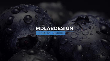 Elegant Titles After Effects Templates