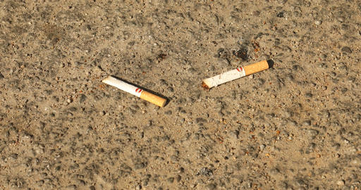 Cigarette buts on road Live Action