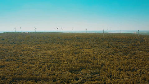Wind turbines in autumn forest Footage