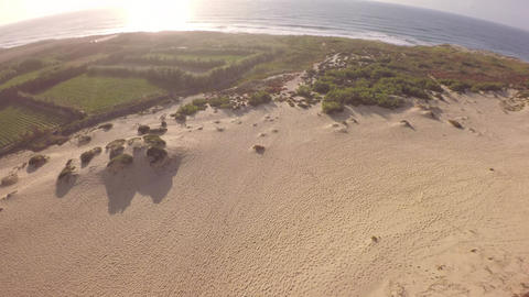 Aeria view over sand dune with coastline plants to ocean in the morning - Portug Footage
