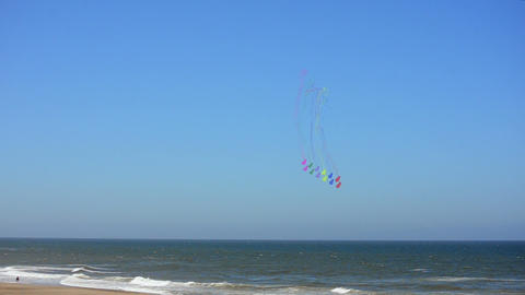 Kites on a Beach Footage