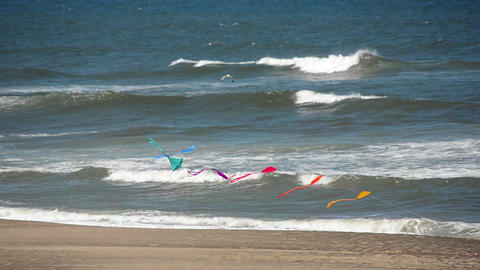 Kites And Pacific Ocean stock footage