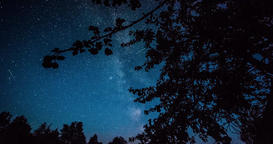 Timelapse of stars over trees at winter night then clouds coming on dark sky Footage