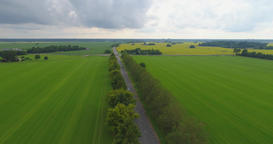 Aerial of green countryside and car driving through 4K Footage