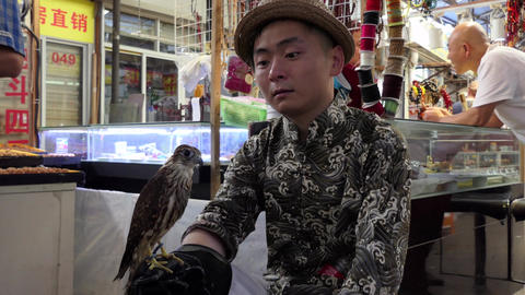 Young Chinese Man Holding Hawk In Shanghai Market China Asia Image