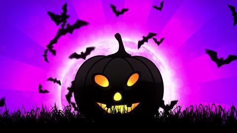 Halloween Pumpkin in Magenta Background Animation