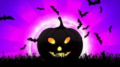 Halloween Pumpkin in Magenta Background Stock Video Footage