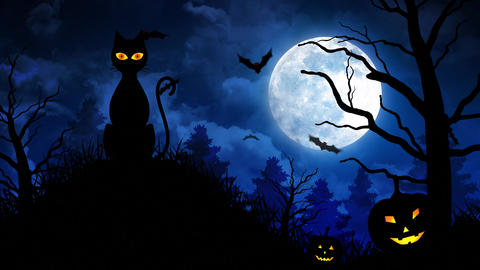 Scary Cat and Moon in Blue Background Animation