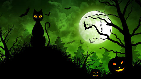 Scary Cat and Moon in Green Background Animation