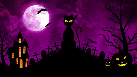 Scary Cat and Castle and Moon in Purple Background Animation
