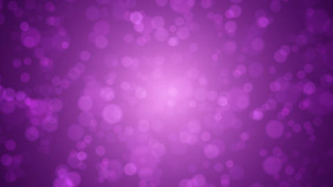 Soft focus abstract purple pink bokeh background Animation