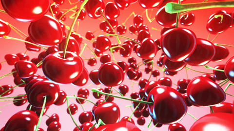 Falling fresh cherries on pink background. Close up. 4K Animation