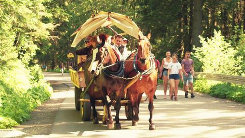 ZAKOPANE, POLAND - JUNE 24, 2017. Steadicam shot of tourist horse-drawn cart in Footage