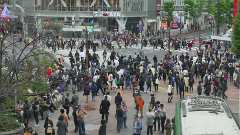 Shibuya Crossing Tokyo Japan Asia People Crowd Commuters Pedestrians Street Footage