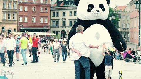 WARSAW, POLAND - JUNE 10, 2017. Man wearing big panda costume walk on the old Footage