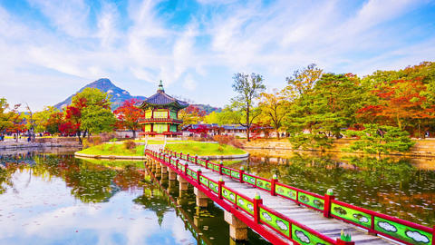 Time lapse Autumn of Gyeongbokgung Palace in Seoul ,Korea Live Action