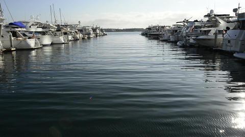 San diego docks Footage