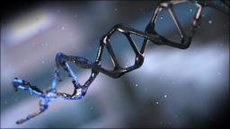 DNA(C4D&AE) 画像
