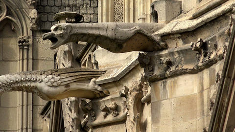 Gargoyles watch over Paris, France from Notre Dame cathedral Footage