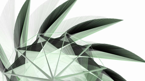 Abstract fractal forms moving background Animation