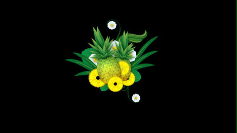 Growing Pineapples After Effects Template