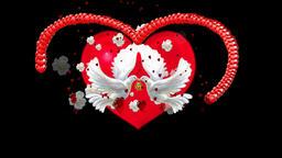 DOVE&LOVE&PEACE 画像