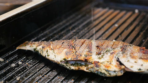 Closeup Wonderful Fresh Fish Fried on Grill with Seasoning Footage