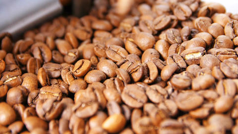 Macro Slow Motion Flavored Brown Well Roasted Coffee Grains Live Action
