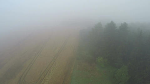 Aerial view from drone, misty morning farmland fields in summer Archivo