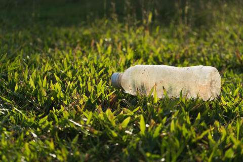 Plastic bottle garbage on green grass in sunny park for environment protection Photo