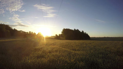 beautiful summer sunrise on farm field with morning mist and clouds. Time lapse Archivo