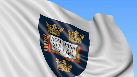 Close-up of waving flag with University of Oxford emblem, seamless loop, blue Footage