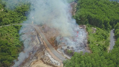 Drone Flies over Fire Burning Trees Branches near Road Plants Footage