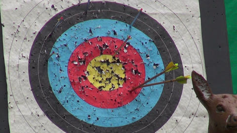 hunters arrow hit goal ring in archery target Footage