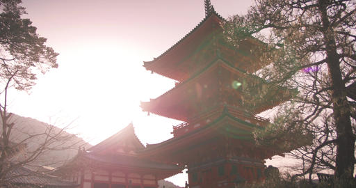 warm sunrise on large orange temple ライブ動画
