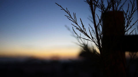 Blue Morning View stock footage