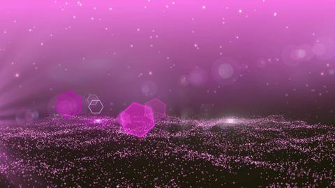 PINK-particle-floor 2 画像