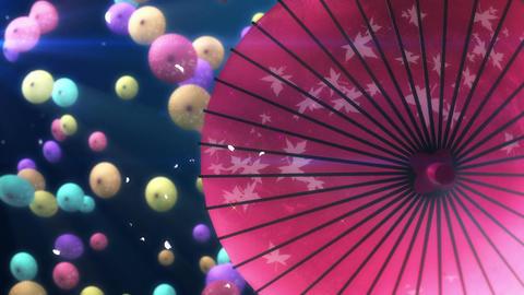 SHA Kasa Sakura 04 Animation