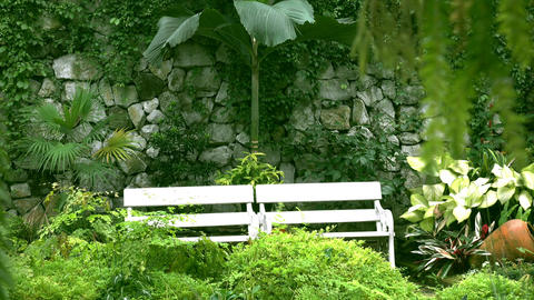 White chair In a garden ビデオ