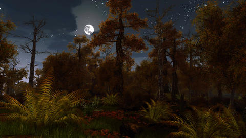 Scary dark autumn forest at full moon night Animation